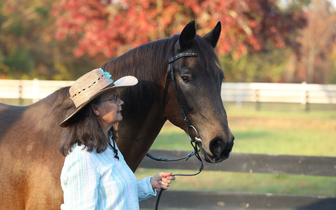 Being a Protective Leader for Your Horse